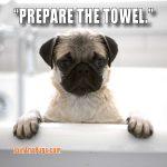 PREPARE THE TOWEL