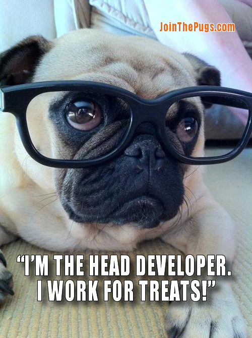 Head Pug Developer