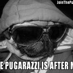 Pugarazzi