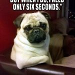 The Most Interesting Pug in the World