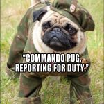 Commander Pug to the Rescue