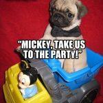 Mickey Pug Club