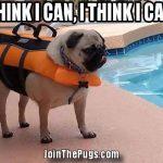 I THINK I CAN