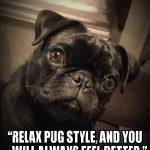Relax Like a Pug