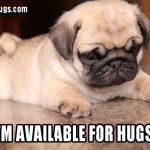 Pug Hugs All Around