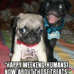 Pug Weekend Is Here