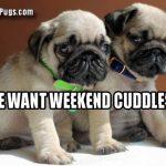 do we get weekend cuddles