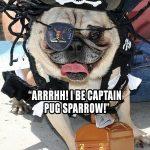 captain pug sparrow