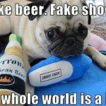 fake beer fake shoe