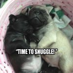 It's Snuggle Time - Join the Pugs