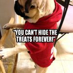 Pug Gate - Join the Pugs
