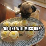 The Great Cupcake Caper - Join the Pugs