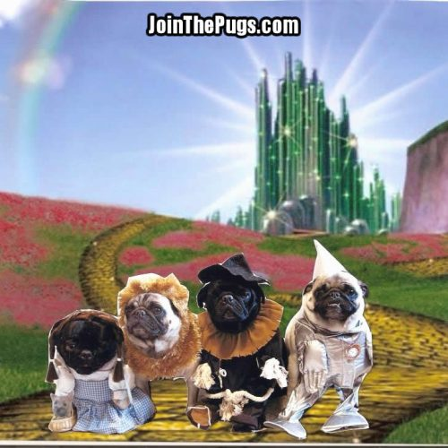 The Wizard of Oz - Join the Pugs