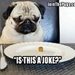 You call this food - Join the Pugs