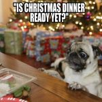 Christmas-Ready Pug - Join The Pugs
