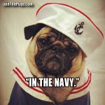 Join The Pugs - (in the navy)