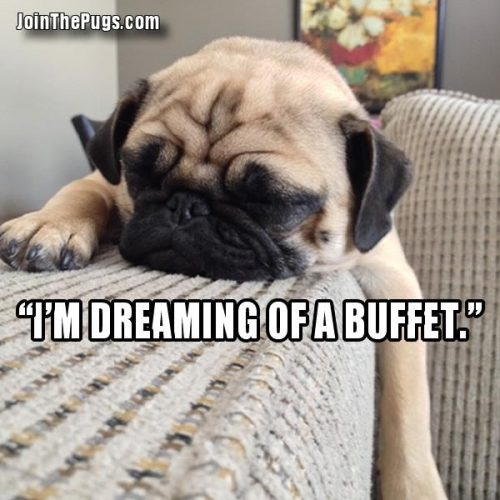 I'm dreaming of a buffet - Join the Pugs