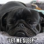Let me sleep - Join the Pugs