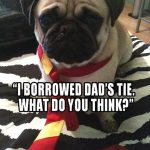 Just Like Dad - Join the Pugs