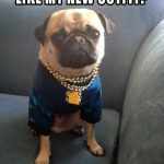 Like my new outfit - Join the Pugs