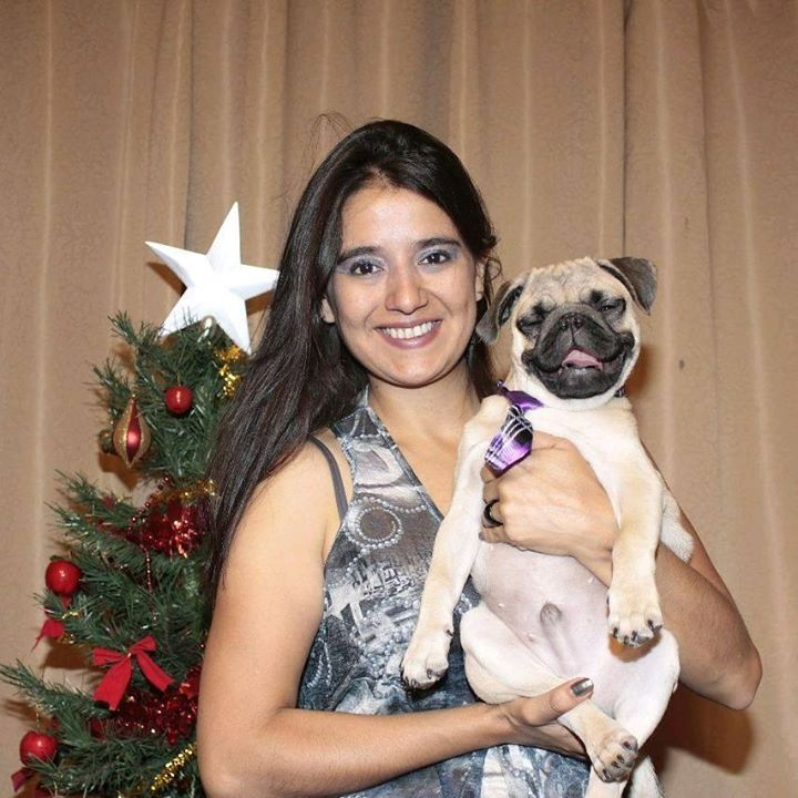 Wiwi the Pug is happy in the arms of her hooman